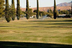 Watering the fairways