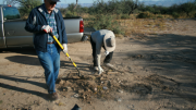 Brooke Curley Photo/ Gila Valley Central: From left, Wendell Carter and Robin Smith work to clean up the Cluff Ranch Road illegal dump site.
