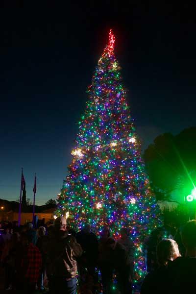 Jon Johnson Photo/Gila Valley Central: The Christmas tree shines bright at Safford City Hall.