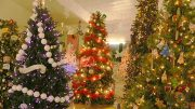 Brooke Curley Photo/Gila Valley Central: The Festival of Trees is a perfect event to witness the beauty of Christmas and get into the seasonal spirit.