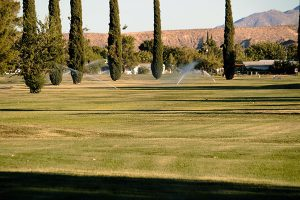Watering the fairways