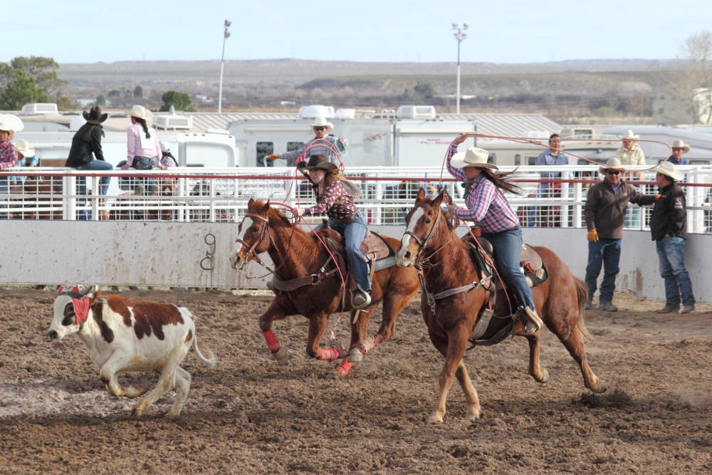 Eric Burk Photo/Gila Valley Central: Two cowgirls attempt to catch a calf in the high school team roping event.