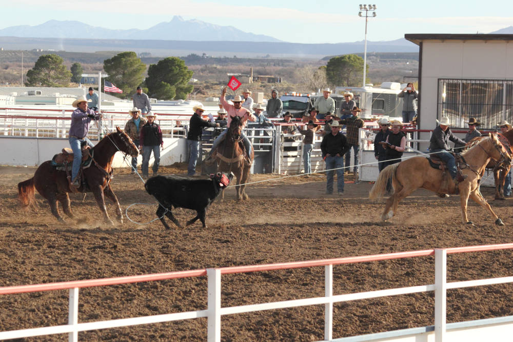 Eric Burk Photo: Gila Valley Central: Victors Wyatt Kent and Daylan Barton stretch out a calf in the high school team roping event.