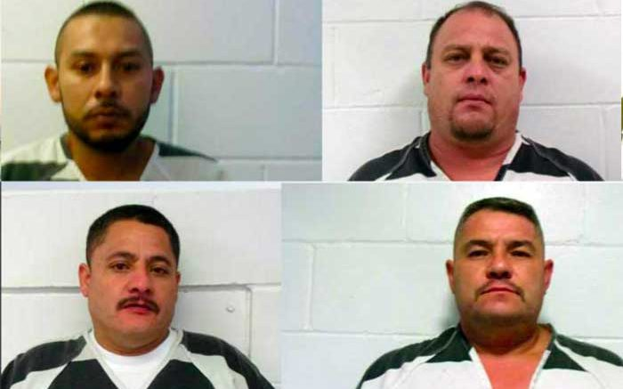 100 pounds of cocaine seized in Greenlee County | GilaValleyCentral Net